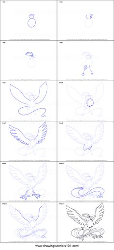 How to Draw Articuno from Pokemon Printable Drawing Sheet by…