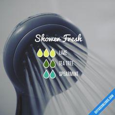 Shower Fresh - Essential Oil Diffuser Blend