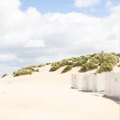 La vie de rêve ! 🌴 #décornaturel #beachforever #bienbienbien #laviealaplage #mavierêvée #summer #mood #beachlife