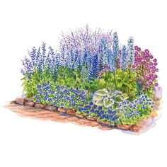 Cottage-Style Gardens; Long-Blooming: Long-Blooming Blue Garden; Small Garden Plans: Blue Garden