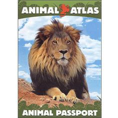 Animal Atlas-Animal Passport [DVD]