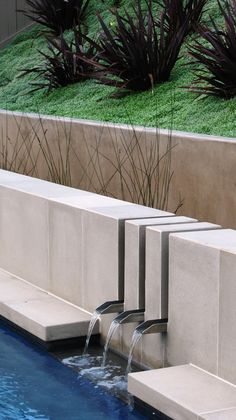 Lovely Water Spout decorating ideas for Winsome Landscape Contemporary design ideas with cast concrete coping cast concrete veneer flax grasses Pool slope planting stainless