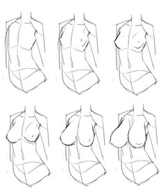 Drawing - Breasts