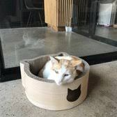 Image result for cat cafe Cat Cafe, Dog Bowls, Cats, Image, Gatos, Kitty, Serval Cats, Cat, Cat Breeds