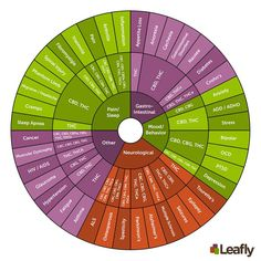 The wheel serves as a handy resource to determine which cannabinoids help treat symptoms associated with mood, eating/gastrointestinal disorders, neurological disorders, pain, sleep disorders, and other medical conditions.