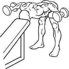 shoulder rear deltoid exercises - Google Search