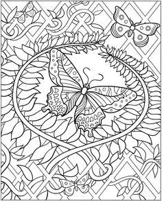 Papillon 1129