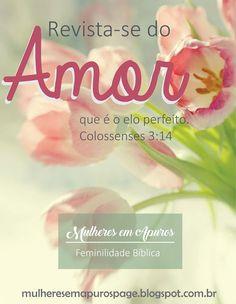 Mulheres em Apuros: [Série Colossenses 3] Vestida a caráter – Mulheres do Alto. Reflexões em Colossenses 3:1-15