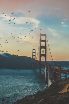 The Best Photos of San Francisco including the Golden Gate Bridge, Fisherman's Wharf, the Cable Cars and other popular San Francisco sites and attractions. Ponte Golden Gate, Golden Gate Bridge, Lac Tahoe, Beautiful World, Beautiful Places, San Francisco California, California California, Road Trip Usa, Death Valley