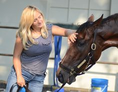 horse racing: Mucho Macho Man Trainer Kathy Ritvo to speak at Gulfstream Horse Racing, Race Horses, Horse Story, Big Purses, Thoroughbred Horse, Derby Day, Mens Trainers, Beautiful Horses, Equestrian