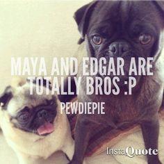 """Maya and Edgar are totally bros :P"" - Pewdiepie"