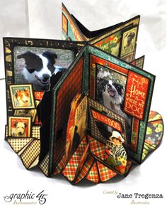 Raining Cats & Dogs Book Box and Book by Jane Tregenza #graphic45