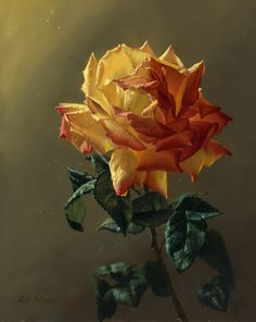 Beautiful Rose paintings by Alexei Antonov. Alexei is a Russian born fine artist who is fascinated by the classical painting. Classical realism is a Art Floral, Still Life Art, China Painting, Renaissance Art, Mellow Yellow, Yellow Roses, Beautiful Roses, Flower Art, Life Flower