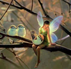 Perhaps birds only fly away from humans because they view them as evil fairies~