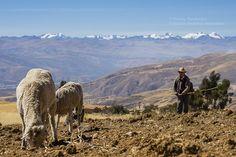 Vista desde las alturas de Parco. Distrito de Parco, provincia de Jauja, región Junín, Perú.