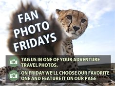 UPDATED: Break out your travel albums everyone cuz FAN PHOTO FRIDAYS starts this week!    To participate, simply post one of your adventure travel photos on our Facebook timeline.    At the end of the week, we'll choose our favorite one to feature as our photo of the week on Facebook, Twitter, and Pinterest pages! #fanphotofri    Be sure to share with all your photo friends! #contest #photocontest