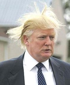 bad hair day, donald?