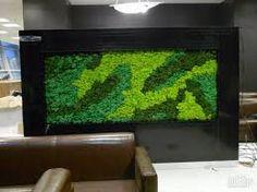 Resultado de imagem para картины из стабилизированного мха