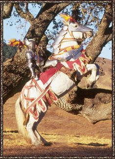 knight and steed    the use of belgian percheron shire and clydesdale horses and