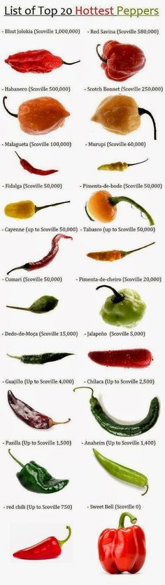 Peppers by Heat Scale : Bhut Jolokia (Scoville Red Savina (up to Scoville Habanero (Scoville Scotch Bonnet (Scoville Malagueta (Scoville Murupi (Scovi… Hottest Chili Pepper, Food Charts, Cooking Recipes, Healthy Recipes, Healthy Food, Stuffed Hot Peppers, Fruits And Veggies, Mexican Food Recipes, Food And Drink