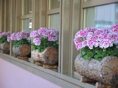 hollowed out logs for window boxes - Window Boxes of the Dolomites Photo Helen McKerral30