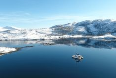 Arctic Fjord Sailing Tromsø - Come join us on a spacious catamaran with a small group to witness marine life and try fishing in the Arctic. Pukka, Tromso, Humpback Whale, Whale Watching, Catamaran, Marine Life, Arctic, Eagles, Habitats