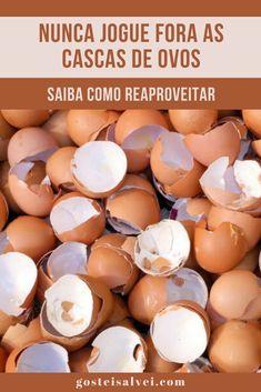 Nunca jogue fora as cascas de ovos! Veja como reaproveitar! - GosteiSalvei Bebidas Detox, Creative Food Art, Copaiba, Kombucha, Remedies, Food And Drink, Health Fitness, Eggs, Banana