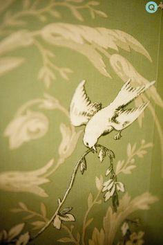 Light Green Bird Wallpaper