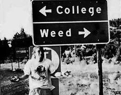 I dont think its that big of a choice. I think both can be accomplished if your smart ; Stay High, Dilema, Life Decisions, Youre My Person, Thats The Way, Smoking Weed, Favim, Funny Signs, Higher Education