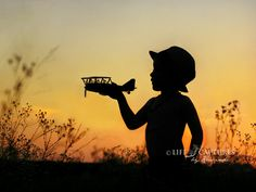 Best silhouette image ever!