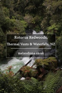 Rotorua Redwoods, Thermal Vents and Waterfalls, NZ. Melandjona.co.uk