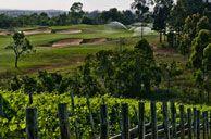 Hunter Valley Wine Tasting Tour From Sydney #LimeAndTonicSydney