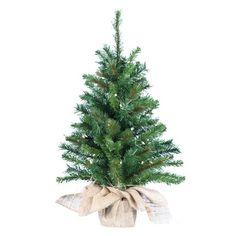 Kurt Adler PreLit Pine Tree 30Inch * Click image to review more details.