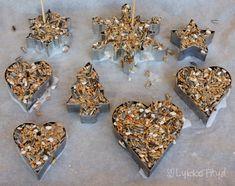 Kakeformer trenger ikke bare brukes til å bake kaker... de kan også brukes til å lage hjemmelaget fuglemat! I et tidligere innlegg kom j...