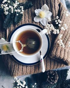 Busy work day, but first a cup of tea ☕️ #tea #cozy Coffee Photos, Tea Culture, Coffee And Books, Detox Tea, Tea Time, Coffee Time, Herbal Tea, Classic Cocktails, My Cup Of Tea