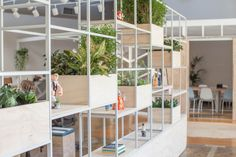 Modular room divider featuring movable shelves & boxes with greenery aplenty