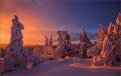 Winter morning in Finland ... by Valtteri Mulkahainen