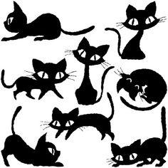 Čierna Africká mačička obrázok