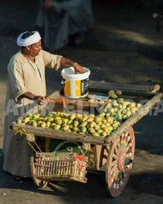Prickly pears seller - Cairo Egypt This man is clearly Arab. Coincidentally, the prickly pear, Sabra in Hebrew, is the name given native born Israelis. Both Arabs and Israelis are Semitic. Old Egypt, Cairo Egypt, Ancient Egypt, Life In Egypt, Egypt Today, Riverside Market, Egypt Tourism, Egyptian Food, Egyptian Art