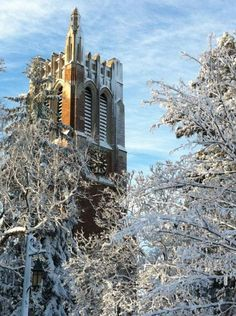 Michigan State in the winter. Best college ever