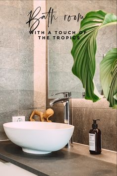 Tropical touches in this minimalist Scandinavian bathroom Modern Bathroom Mirrors, Modern Bathroom Lighting, Large Bathrooms, Bathroom Fixtures, Beautiful Bathrooms, Bathroom Interior, Bathroom Ideas, White Minimalist Bathrooms, Minimalist Toilets