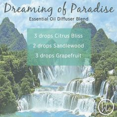 Summer sandals and citrus all wrapped up in a diffuser blend! You don't have to go all the way to the Bahamas to experience paradise. You will love this essential oil diffuser blend! www.hayleyhobson.com