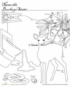 Where In The Usa Is Carmen Sandiego Coloring Page