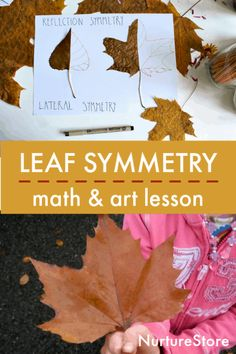 Let's learn about leaf symmetry in this STEAM lesson that combines math and art. Leaf symmetry lesson combining math and art This activity combines math, art, and nature study, as we explore the…More Symmetry Activities, Nature Activities, Autumn Activities, Stem Activities, Maths In Nature, Forest School Activities, Symmetry Art, Math Art, Kindergarten Lessons