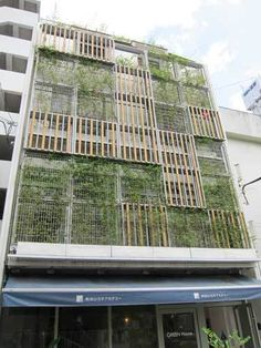 green_house_aoyama
