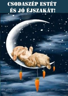 good night and sleep tight. Photo Zen, Photo D Art, Bon Week End Image, Sleeping Bunny, Good Night Gif, Motifs Animal, Good Night Sweet Dreams, Rabbit Art, Bunny Art