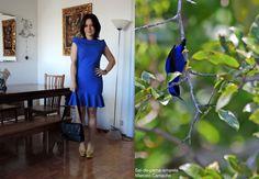 Look inspirado no Saí-de-perna-amarela. Veja mais fotos acessando http://bloganimalchic.com/2014/12/17/bichododia-vestido-azul/ #SaiDePernaAmarela