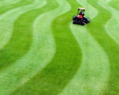 Keith Siler in UNCG Sports Turf created this mowing masterpiece on the baseball stadium turf Landscape Design Program, Sports Turf, Garden Rake, Riding Lawn Mowers, Garden Illustration, Lawn And Landscape, Fruit Garden, Landscaping Tips, Back To Nature