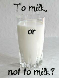 Laktoza laktozie nierówna: fakty i mity