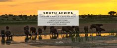 Ker & Downey® Africa is an adventure and safari travel company operating LuxVenture® trips throughout Africa. Family Getaways, Travel Companies, In The Heart, Cape Town, South Africa, Safari, African, Adventure, Night